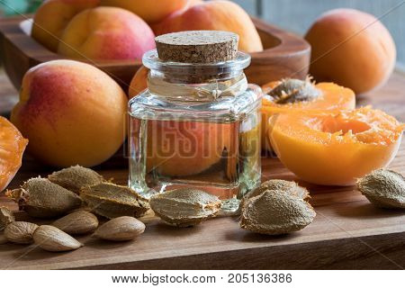 A Bottle Of Apricot Kernel Oil With Apricots And Apricot Kernels