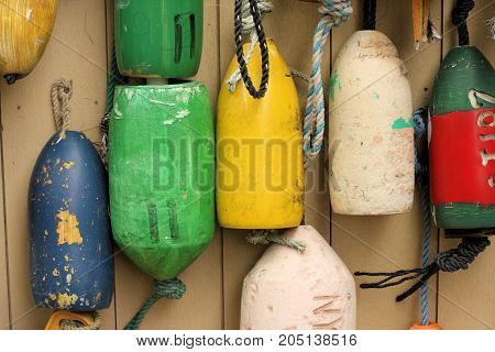 Multi-colored lobster pot floats hanging on a wall.