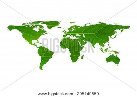 World Map White Leaf Texture On White Background, Ecology And Environment Concept.