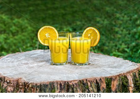 The two glasses of fresh orange juice with orange slices on a wooden stump outdoors. Green background