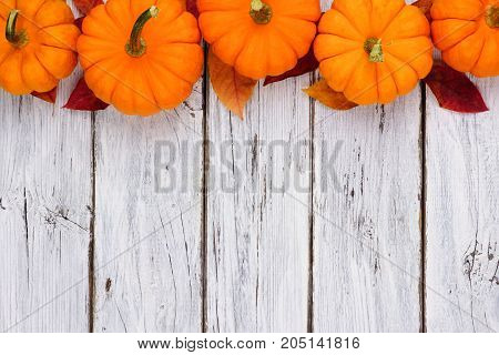 Autumn Leaves And Pumpkin Top Border Over A Rustic White Wood Background