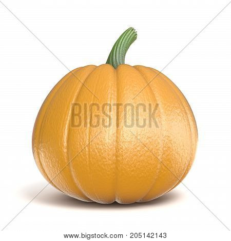Pumpkin 3D Render Illustration