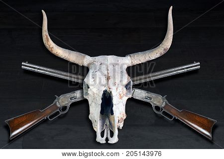Antique cowboy lever action rifle and cow skulls.