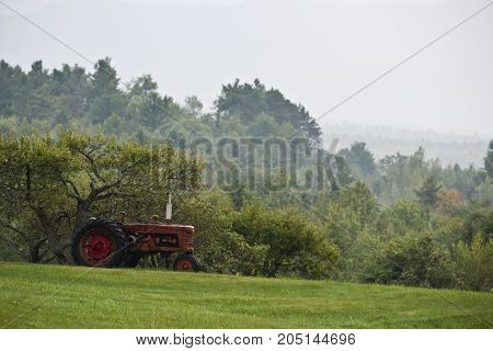 An old red tractor in a field.