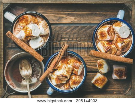 Hot chocolate in enamel mugs with cinnamon and roasted marshmallows in wooden tray, top view, selective focus, copy space, horizontal composition