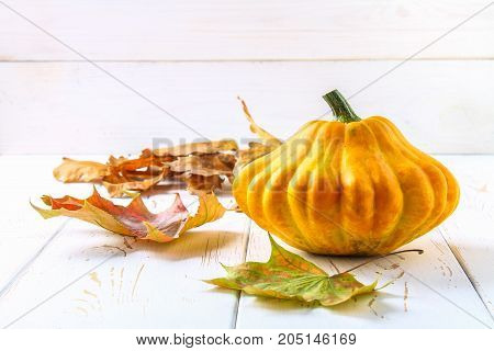 Pumpkin Patty Pan And Maple Yellow Leaves On A White Wooden Table. Autumn Harvest.
