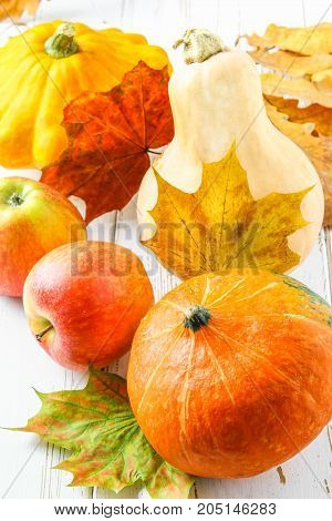 Pumpkin And Patty Pan, Apples And Maple, Oak Yellow Leaves On A White Wooden Table. Autumn Harvest.