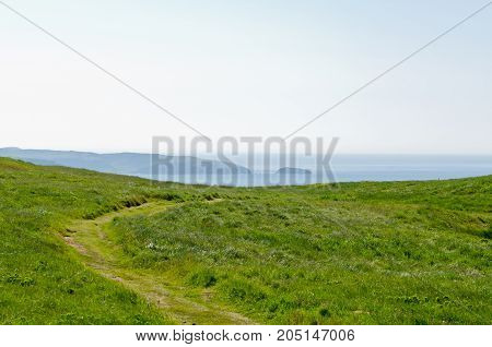 The shore of Newfoundland Canada in sunny day