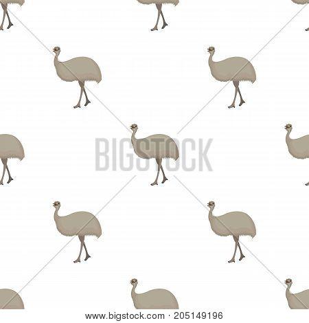 Bird, ostrich emu.African wild ostrich single icon in cartoon style vector symbol stock illustration .