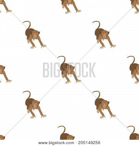 Monkey, wild animal of the jungle. Monkey, mammal primate single icon in cartoon style vector symbol stock illustration .