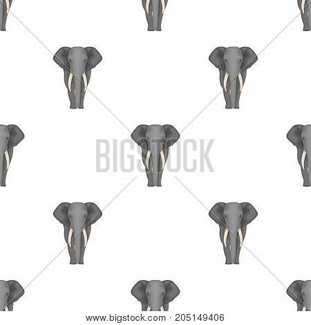 The elephant, the biggest wild animal. African elephant with tusks single icon in cartoon style vector symbol stock illustration .