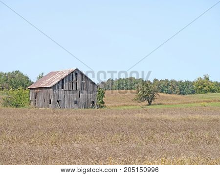 A barn in disrepair stands in a farm field for which the Michigan growing season is nearing its end.