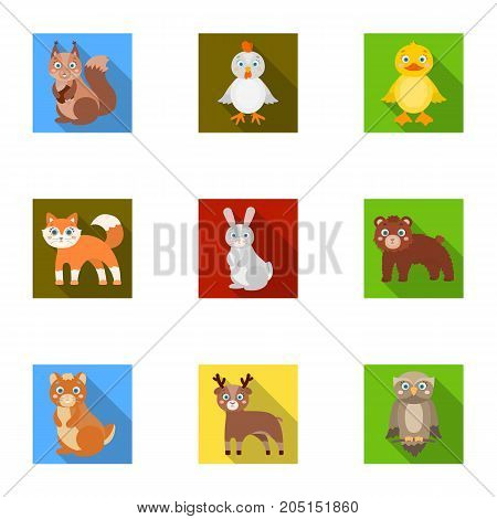 Farm, production, zoo and other  icon in flat style. Animals, nature, forest