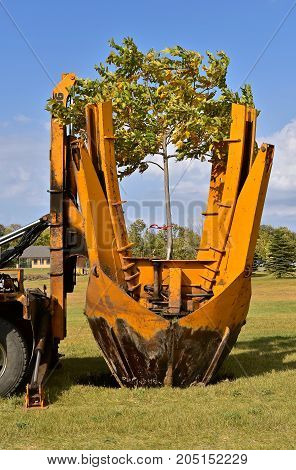 The mounted spade, jaws, and bucket are part of a tree removal machine removes and transplant young trees: Dropping tree and root system into the ground.