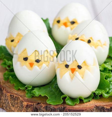 Little chicken in nest deviled eggs served with salad on a wooden board square format
