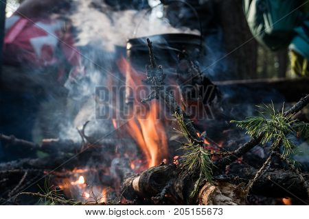 cook food at the stake in the woods at evening