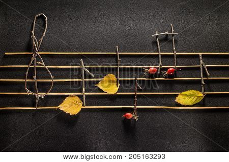 Musical notes conception. Wooden musical notes and leaves. Autumn background
