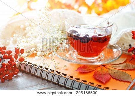 Cup of tea, Rowan and Notepad on wooden table. Autumn still-life. Autumn mood.