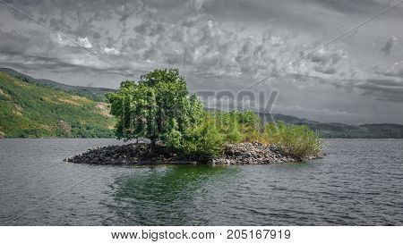 Long shot of tiny island with tree in the middle of Sanabria's lake