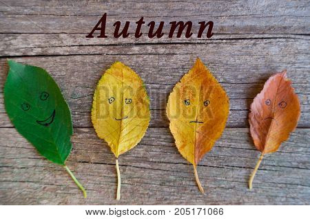Four colorful autumn leaves with different emotions - happy glad indifferent sad on the wooden background. inscription AUTUMN