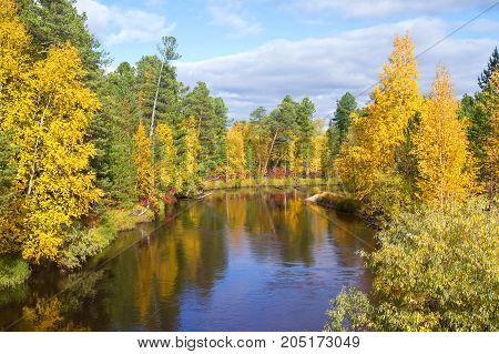 Autumn landscape with river and picturesque forest
