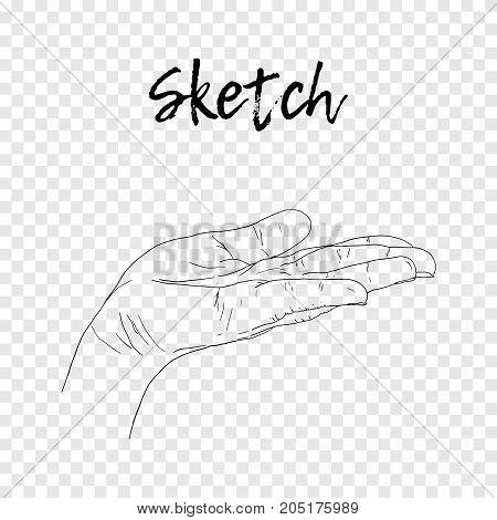 Sketch hand begging hands. Vector line illustration background