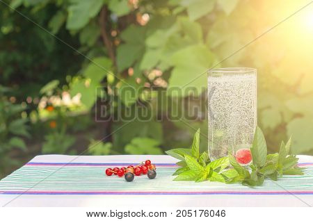 Cherry in a glass of mineral water mint leaves splashes in the sun's rays