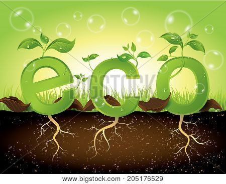 eco concept.concept of green sprout growing from ground.