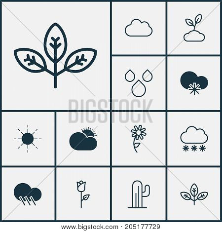 Landscape Icons Set. Collection Of Raindrop, Plant, Cold Climate And Other Elements