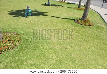 People resting over park grass under the tree shadows at noon Tangier Morocco
