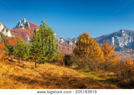 Colorful Landscape In Autumn, National Nature Reserve Sulovske S