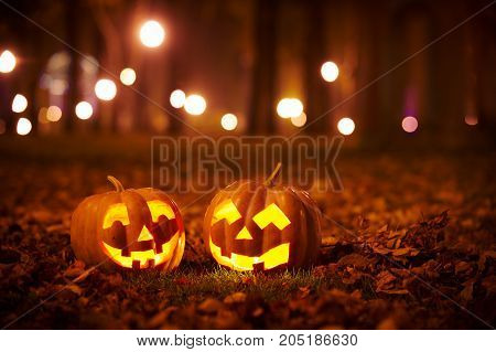 Two Kind Halloween Pumpkins in the park at night