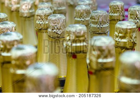 set butyly champagne on a sale in shop