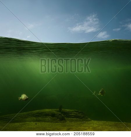 Underwater or  fishing background with copy space
