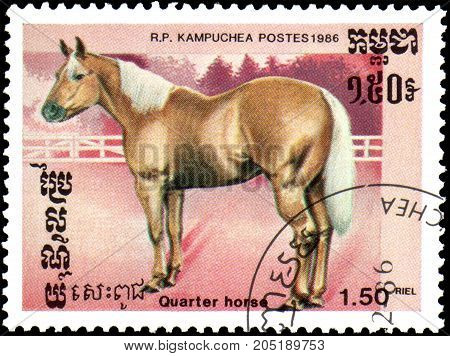 R.P. KAMPUCHEA - CIRCA 1986: A stamp printed in R.P.Kampuchea shows a Quarter horse, series breed of horses