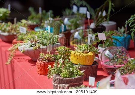Green flower arrangement on table at public outdoor garden