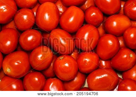 Group Of Fresh Tomatoes. Tomatoes Background. A Lot Of Fresh Tomatoes.  Summer Background With Many