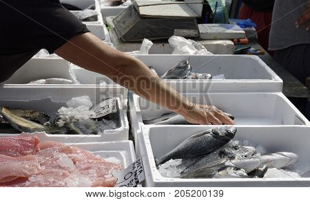 Hand grabbing a fish from a table with containers with various sort of fish picture from a fish market in the North of Greece.