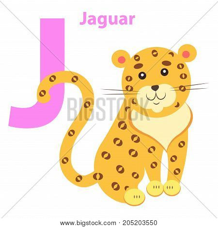 English Nursery card with lilac J letter Jaguar isolated on white. Yellow and spotted wild animal on children training poster. Vector illustration of school preparation card flat design cartoon style.