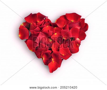 Beautiful red rose petals heart isolated on white background