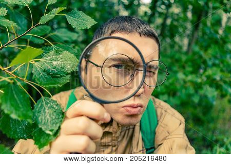 Portrait of male botanist with magnifying glass in summer forest