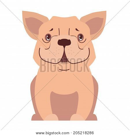 Funny cute cartoon beige french bulldog sitting with smiling muzzle isolated flat vector. Lovely purebred pet illustration for animal friends and companions concepts, pet shop ad