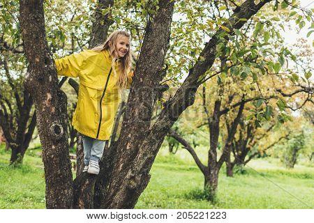 Child In Raincoat On Tree