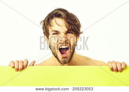 Bearded man short beard. Caucasian sexy topless young angry macho with stylish beard and moustache holding light-green plank isolated on white background poster