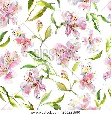 Romantic watercolor Summer garden alstroemeria wreath decoration flowers pattern