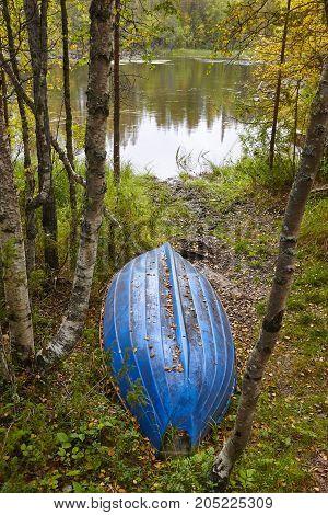 Finland forest landscape at Pieni Karhunkierros trail. Autumn season. Vertical