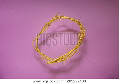 Yellow Crown Of Thorns On A Lilac Background Top View