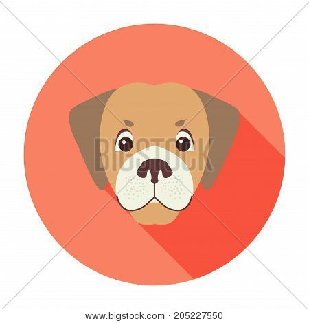 Cute dog muzzle cartoon icon. Funny brown puppy head in color circle flat vector isolated on white background. Lovely purebred pet illustration for animal friend concept, shop or veterinary clinic ad