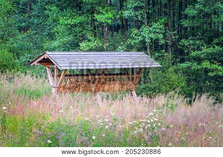 Pasture for animals. Wooden pasture in the green forest.