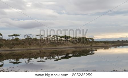 A reflection in calm water of river in Serengeti